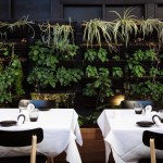 BEST DINING IN MELBOURNE
